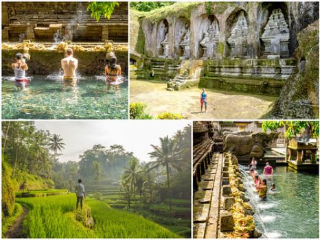 Highlights: Central Bali — Tegalalang Rice Terraces, Tampaksiring, Tirta Empul, Gunung Kawi